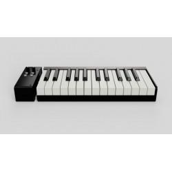 Piano de Voyage 25 Keys Pack